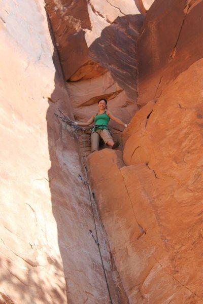 Rock Climbing Photo: Top 40