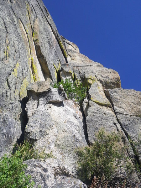 Rock Climbing Photo: Move up to the bush then stay in the hand crack ov...