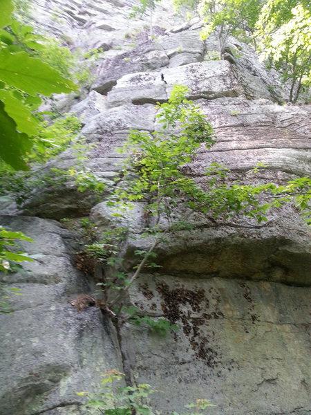 Rock Climbing Photo: Coyote Crack