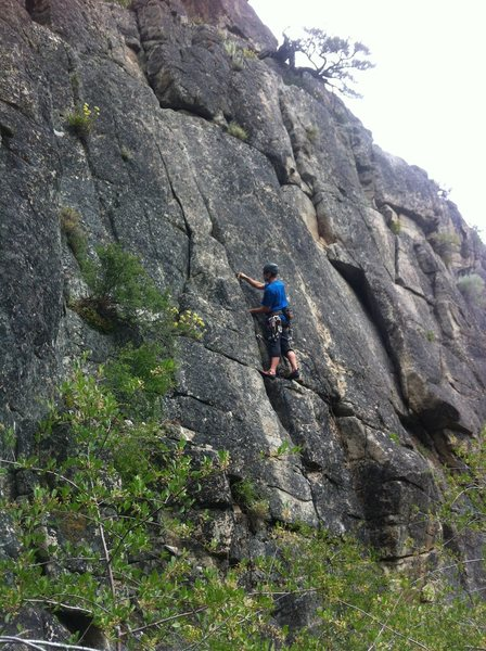 Rock Climbing Photo: Laine leading 5.8