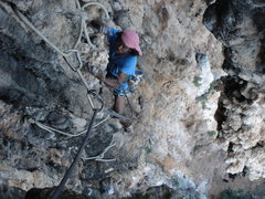 Rock Climbing Photo: Dut on the 1st pitch of Looney Tunes!