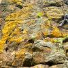Crimpin on the basalt!