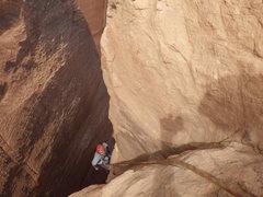 Rock Climbing Photo: taylor, firen up