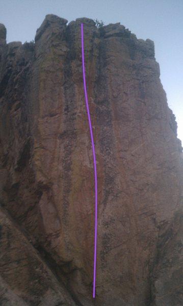 Cowboy Junkie follows the center orange streak/drawn purple line.