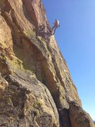 Rock Climbing Photo: marsupials