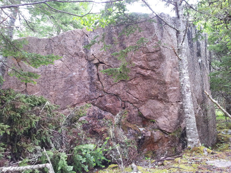 Extinction boulder from the trail.