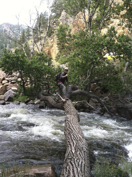 """Rock Climbing Photo: Tree crossing from the """"other"""" side of t..."""