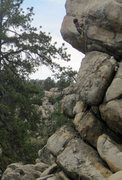 Rock Climbing Photo: Bryn Owen (9) on Mule Kick.