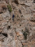 Rock Climbing Photo: Add Brain Full of Spiders to make this a top 5 cli...