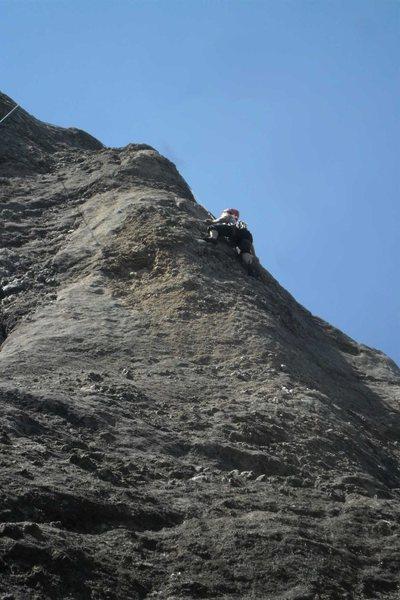 Rock Climbing Photo: Brenda at the crux of Shark Bait