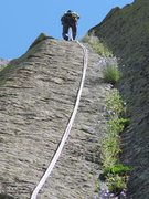 Rock Climbing Photo: Campanula in the West Face rappels