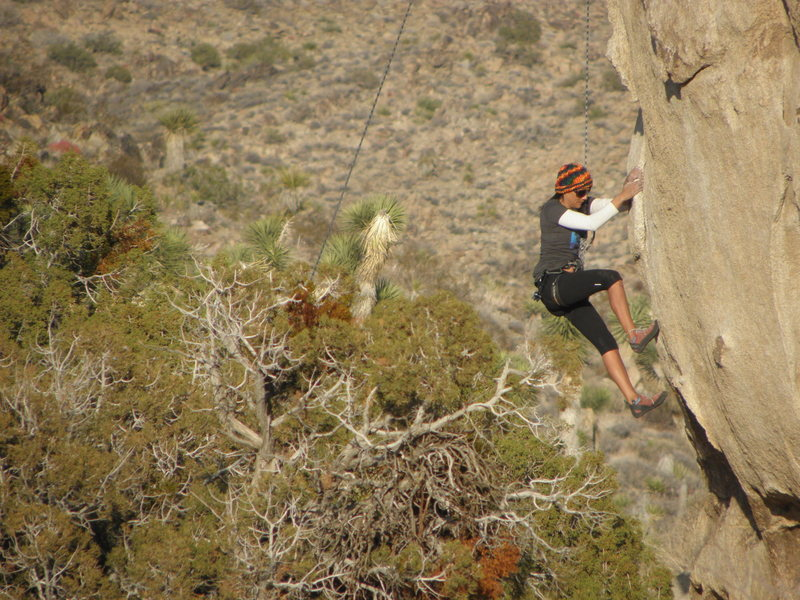 Rock Climbing Photo: Gina Bararra on Wait Until Dark