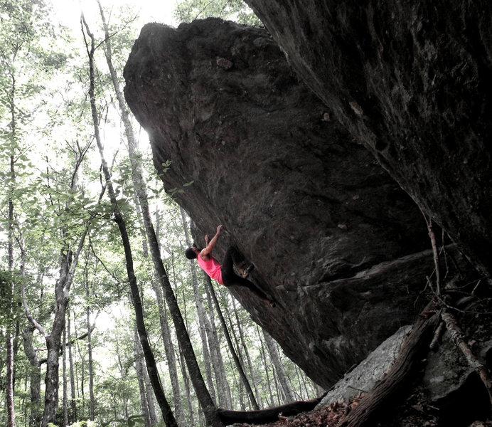 Rock Climbing Photo: Bulls