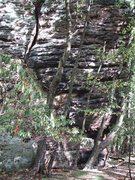 Rock Climbing Photo: Slope-opotamus  before bolting and cleaning   #1 T...