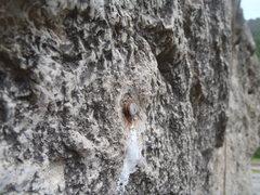 Rock Climbing Photo: Fat Man #3.