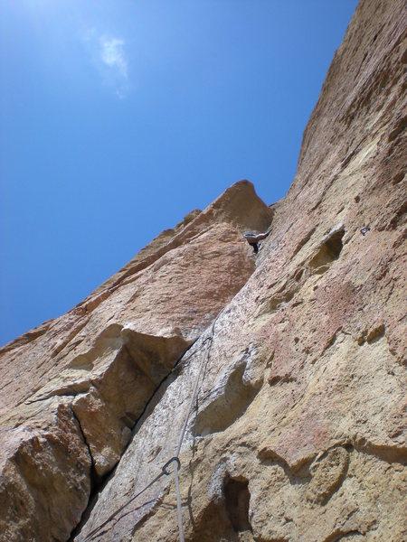 Richard Shore post crux of pitch 2 (5.10b) of Zebra Zion, Smith Rock, OR.