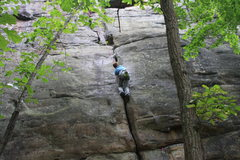 Rock Climbing Photo: Matt jamming past the crux