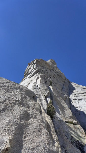 Rock Climbing Photo: many options to surmount the first headwall