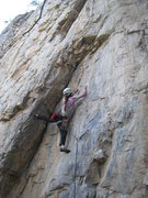 Rock Climbing Photo: Anne Yeagle on Premonition