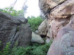Rock Climbing Photo: More brush.