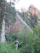 Rock Climbing Photo: Tree walking across the poison ivy.