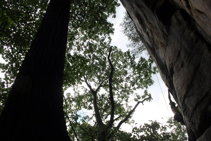 Rock Climbing Photo: The Hubba Bubba traverse on TR.