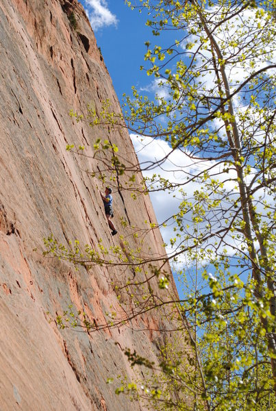 Rock Climbing Photo: Somewhere on the Ripple Wall