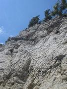 Rock Climbing Photo: Travis working The Bird is the Word.