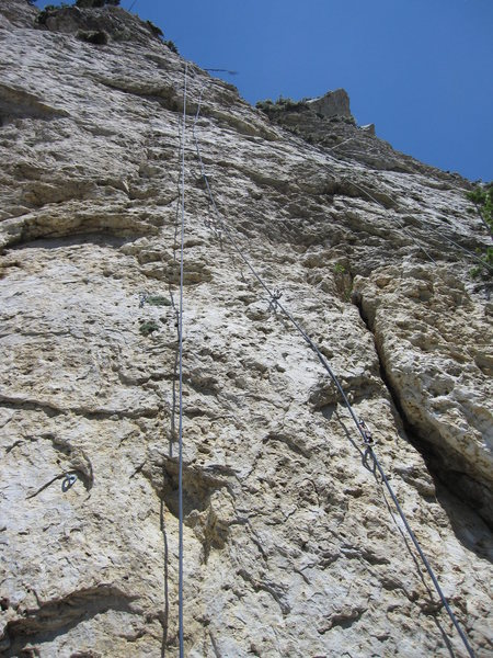 Rock Climbing Photo: Antidote is the right-hand rope line.
