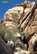 Rock Climbing Photo: Olive oil Red Rocks Nevada
