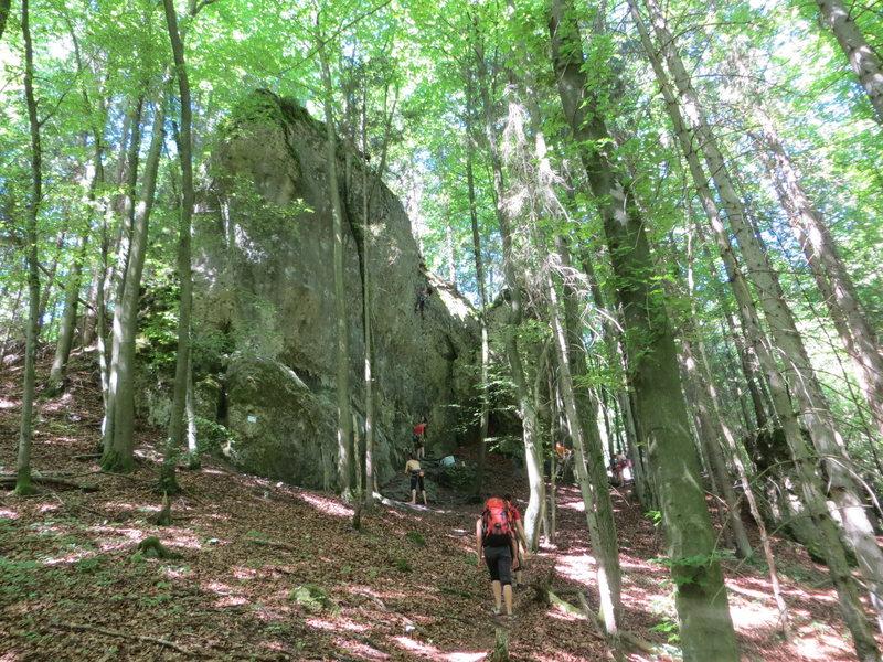 Rock Climbing Photo: Reichelsmühler Wand