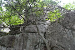 Rock Climbing Photo: The traverse and bhind the trees is Ledgeland
