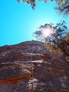 Rock Climbing Photo: High on middll earth