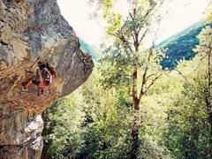 Rock Climbing Photo: Leif, Clipping the second to last bolt. (Nikon PL5...