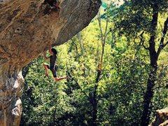 Rock Climbing Photo: Kyram, Cutting loose on the Prestidigitator 13d-is...