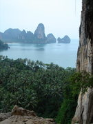 Rock Climbing Photo: Above the canopy looking over to Railay West...