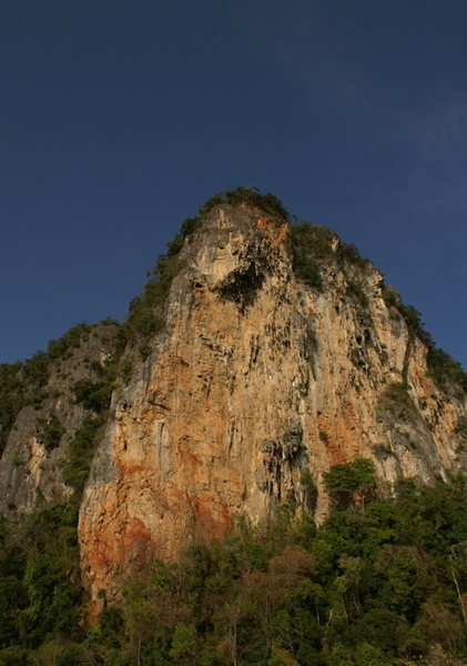 Rock Climbing Photo: Big Tree Wall(Khao Kom)