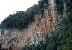 Rock Climbing Photo: Grateful Wall