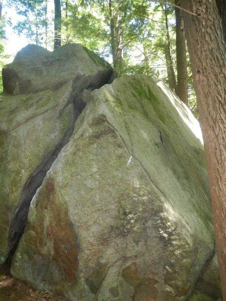 Rock Climbing Photo: Bears and bugs