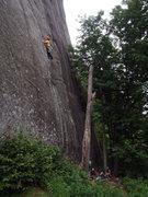 Rock Climbing Photo: Climber on The Sting