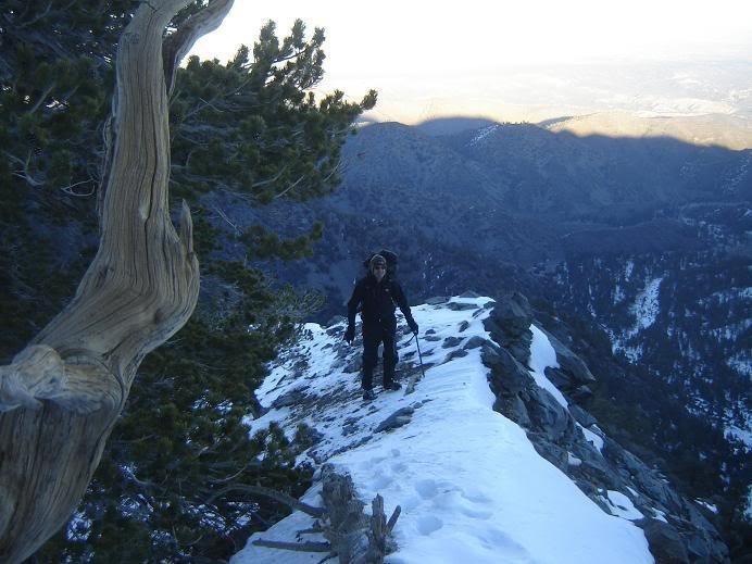 Fritz on the ridge