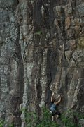 Rock Climbing Photo: crawling out above the trees (photo from the top o...