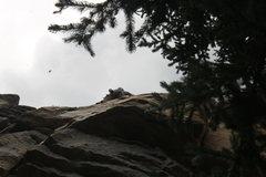 Rock Climbing Photo: Tread lightly. Seriously.