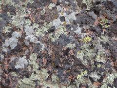 Rock Climbing Photo: 007