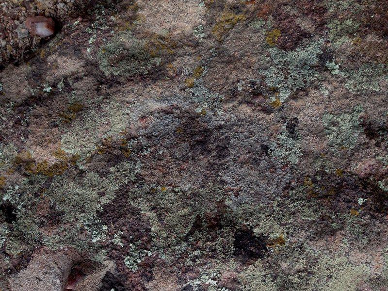 "Rock Climbing Photo: ""..."""
