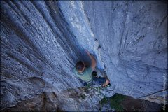 Rock Climbing Photo: Rooster