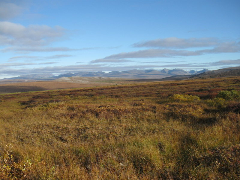 A typical view along the Nome-Teller Highway looking toward the Kigluaik Mountains.