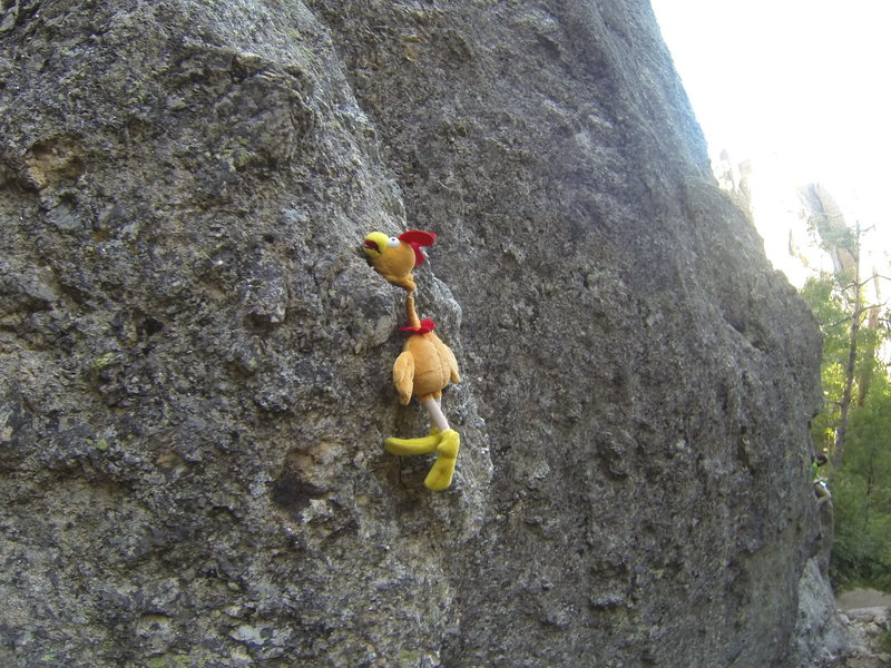 Rock Climbing Photo: There is no one here but us chickens!