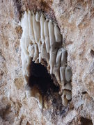 Rock Climbing Photo: The magnificent honeycomb that resided above the c...