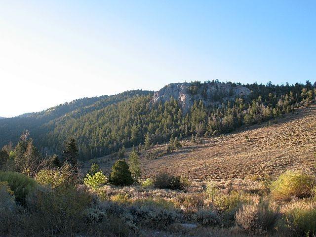 Limestone crag near Timber Creek CG, Ely